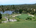 palm-hills